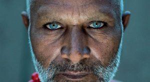 Gli occhi di Sahiwal