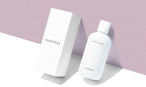 shampora4-1638x20481